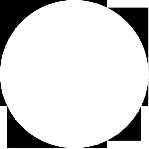 bloquenegrocl